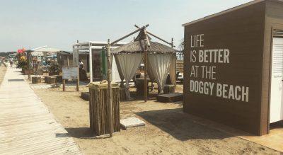 Bau doggy beach lignano Sabbiadoro