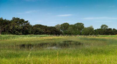 parco botanico lino delle fate