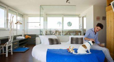 vacanze a quattro zampe in hotel a riccione Mypethotel.it