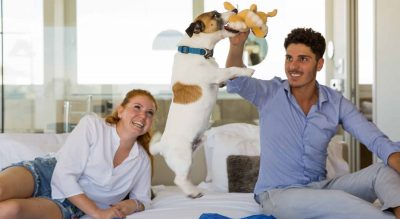 Bau Hotel Pet Friendly Riccione Mypethotel.it