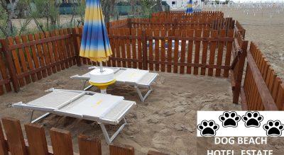 Spiaggia Pet Friendly Hotel Estate Rimini Mypethotel