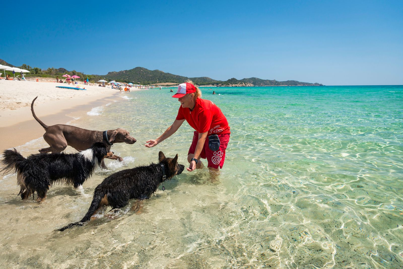 La Tiliguerta Dog Beach Sardegna Mypethotel