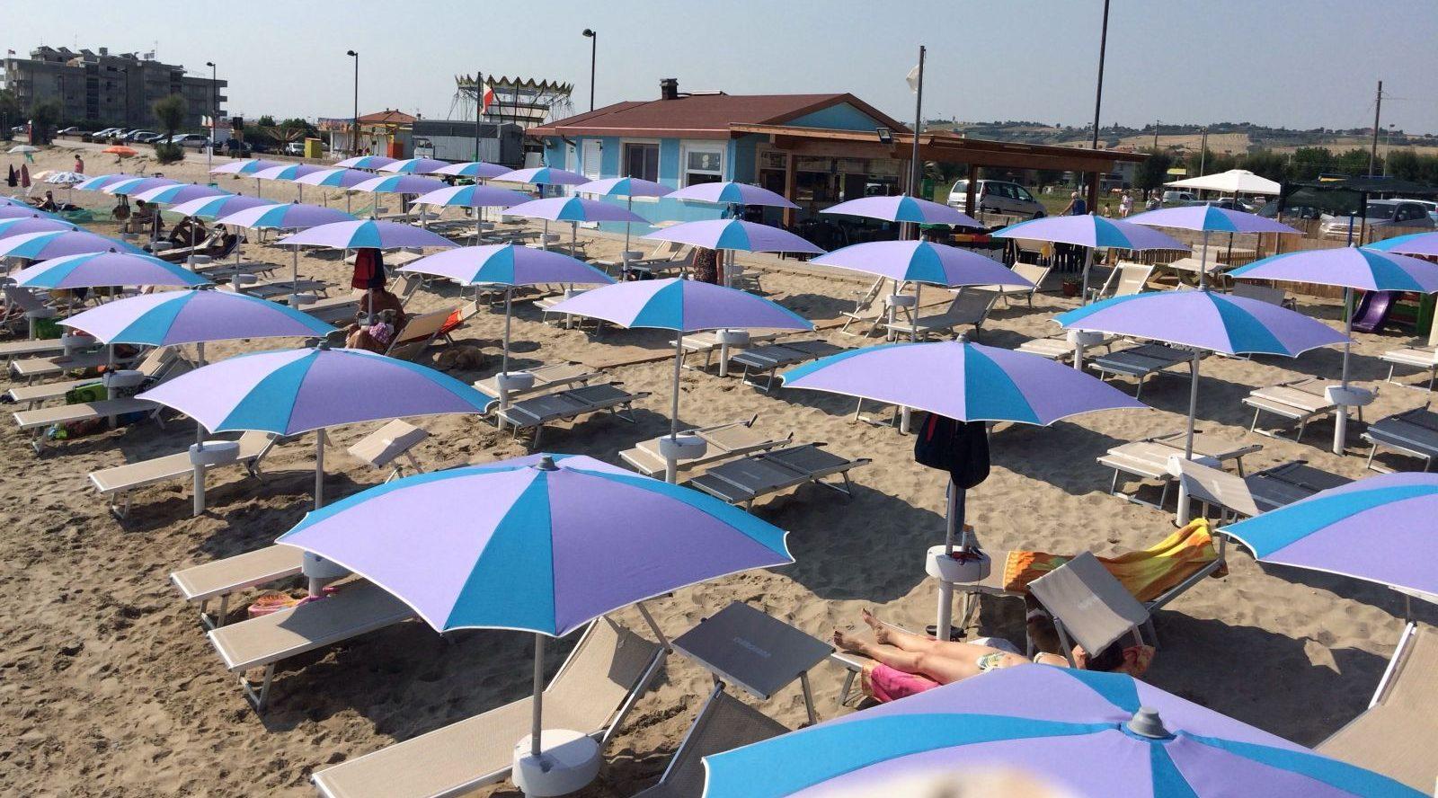 Islamorada Dog Beach Fano Mypethotel