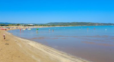 spiaggia pet friendly gargano